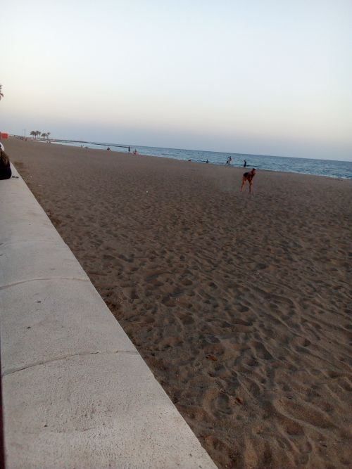 Almeria 29-5-20 playa